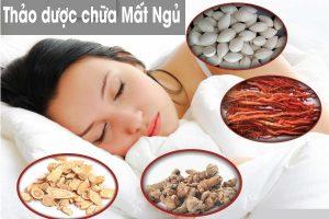thảo dược chữa bệnh người bị mất ngủ